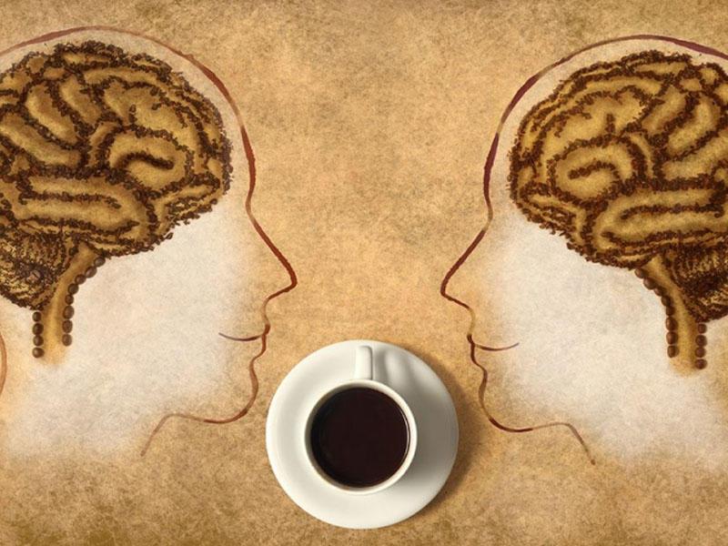 Влияние кофеина. Как информация передается в нашем теле?